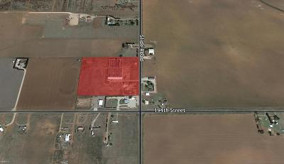 Lubbock Commercial Lots & Land For Sale: 19108 Farm Road 1730