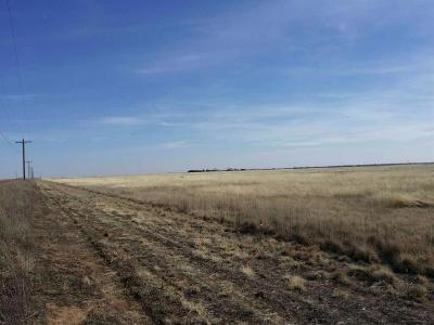 Shallowater Residential Lots & Land For Sale: 9401 County Road 5700