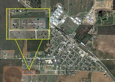 Bailey County, Lamb County Residential Lots & Land For Sale: County Road 202