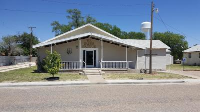 Bailey County, Lamb County Commercial For Sale: 415 East Ave F