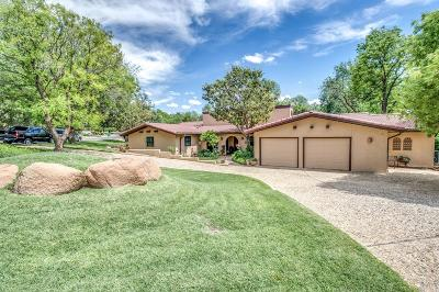 Ransom Canyon Single Family Home For Sale: 15 East Lakeshore Drive