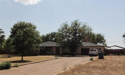 Single Family Home For Sale: 831 North Us Highway 385