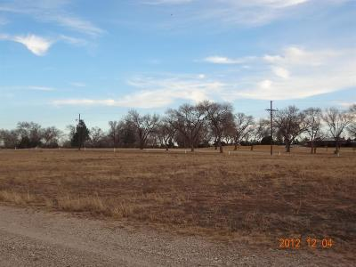 Levelland Residential Lots & Land For Sale: 400 John Dupree Drive
