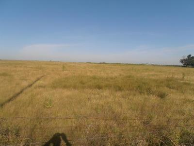 Anton TX Farm & Ranch Under Contract: $25,000