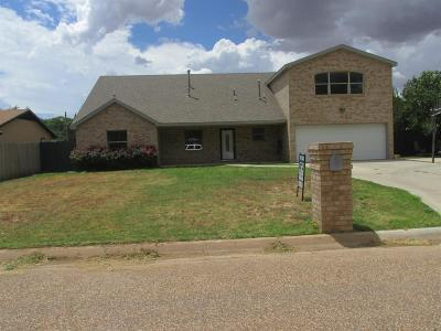 Slaton Single Family Home For Sale: 1025 South 15th Street