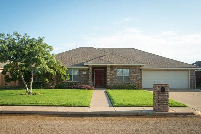 Shallowater Single Family Home For Sale: 1423 10th Street