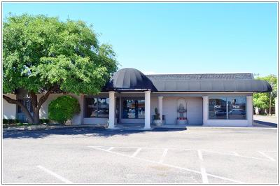 Lubbock Commercial For Sale: 3630 50th Street