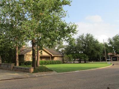 Littlefield Single Family Home For Sale: 300 East 22nd