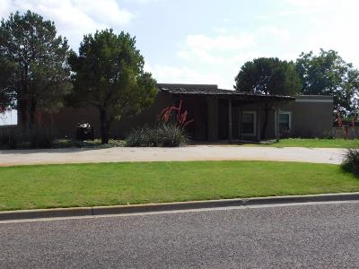 Bailey County, Lamb County Single Family Home For Sale: 1713 W Ave I