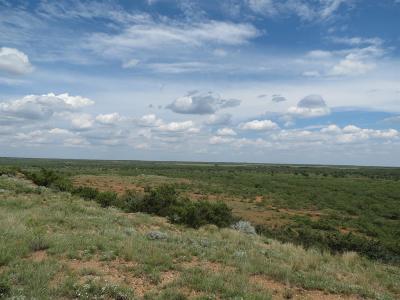Post TX Farm & Ranch For Sale: $575,000