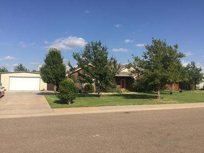 Lubbock Single Family Home For Sale: 12503 Hudson Avenue