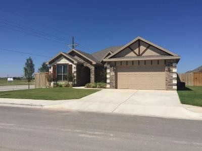 Lubbock Single Family Home For Sale: 9616 Kline Avenue
