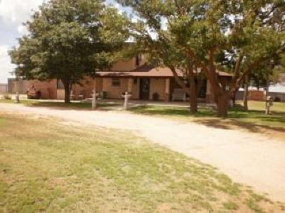 Levelland Single Family Home For Sale: 3352 South Us Highway 385