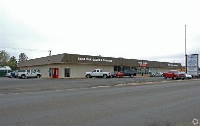 Levelland Commercial For Sale: 304 Austin Street