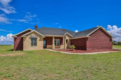 Single Family Home For Sale: 117 Ridge Road
