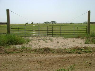 Cochran County, Crosby County, Dickens County, Garza County, Hale County, Hockley County, Lamb County, Lubbock County, Lynn County, Terry County Farm & Ranch For Sale: Railroad