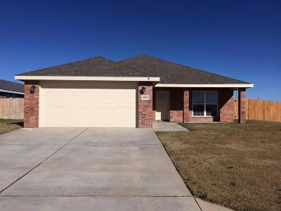Lubbock Single Family Home For Sale: 8802 17th Street