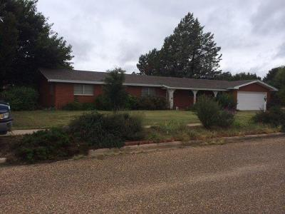 Bailey County, Lamb County Single Family Home For Sale: 213 Southwest 1st Street