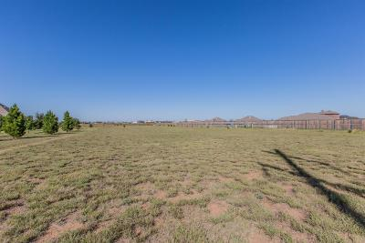 Lubbock Residential Lots & Land For Sale: 8106 County Road 7000