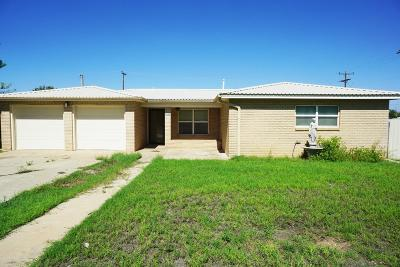 Seminole TX Single Family Home For Sale: $170,000