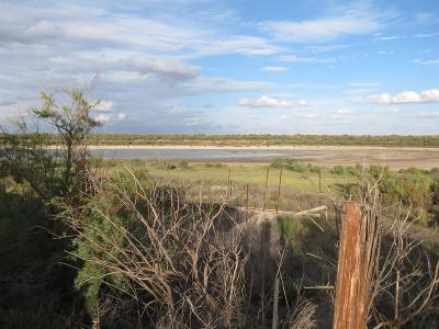 ODonnell TX Farm & Ranch For Sale: $288,150