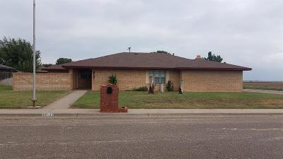Levelland TX Single Family Home Sold: $114,900