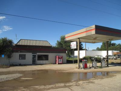 Slaton  Commercial For Sale: 6202 East Us Highway 84