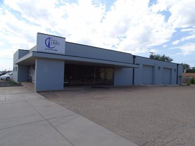 Lubbock Commercial For Sale: 2611 34th Street