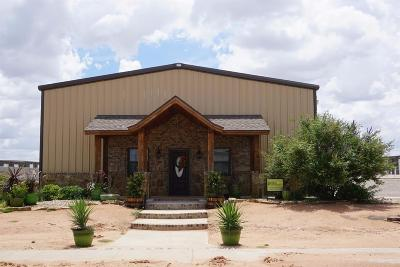 Lubbock Commercial For Sale: 5619 132nd Street