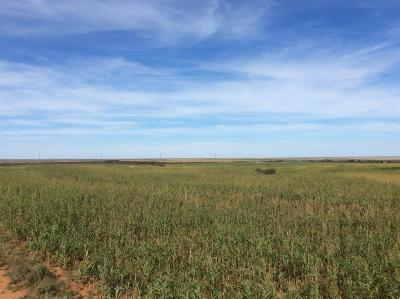Paducah TX Farm & Ranch For Sale: $701,960