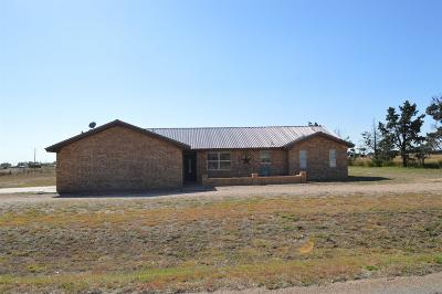 Levelland Single Family Home For Sale: 2326 East Ellis Street