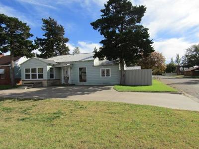 Bailey County, Lamb County Single Family Home For Sale: 302 East Waylon Jennings Boulevard