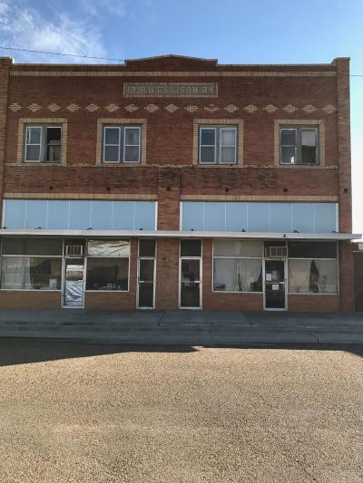 Commercial For Sale: 115 W Aspen