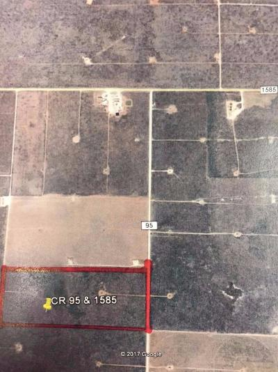 Cochran County, Crosby County, Dickens County, Garza County, Hale County, Hockley County, Lamb County, Lubbock County, Lynn County, Terry County Farm & Ranch For Sale: County Road 95