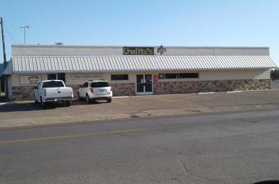 Littlefield TX Commercial For Sale: $170,000