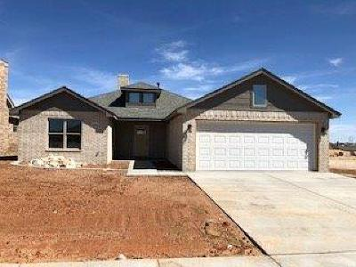 Lubbock Single Family Home For Sale: 10105 Ave W
