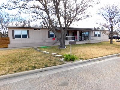 Bailey County, Lamb County Single Family Home For Sale: 719 West 8th