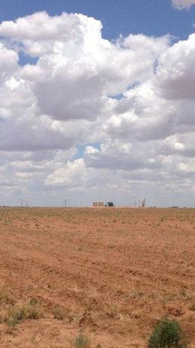 Lubbock Farm & Ranch For Sale: Farm Road 2641
