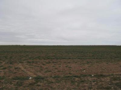 Lubbock Residential Lots & Land For Sale: 7 Woodrow
