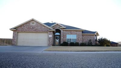 Lubbock Single Family Home For Sale: 6507 71st Street