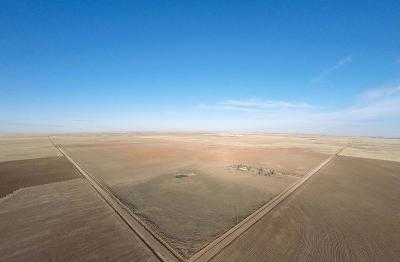 Bailey County, Lamb County Farm & Ranch For Sale: County Road 1272