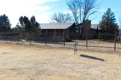 Bailey County, Lamb County Single Family Home For Sale: 1234 Us Highway 84