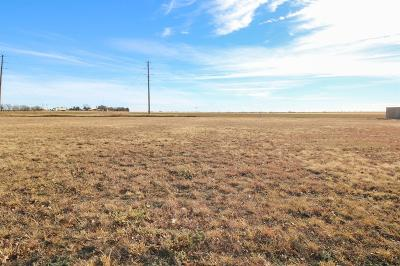 Bailey County, Lamb County Residential Lots & Land For Sale: 248 E 28th