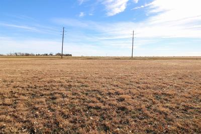 Bailey County, Lamb County Residential Lots & Land For Sale: 250 E 28th