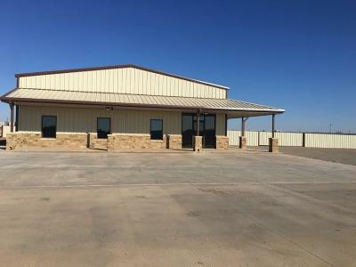 Lubbock Commercial For Sale: 922 Private Road 7315
