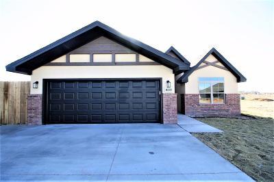 Lubbock Single Family Home For Sale: 10318 Vernon Drive