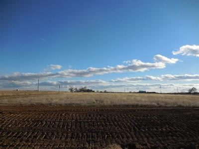 Lubbock Residential Lots & Land For Sale: 6617 County Road 7700