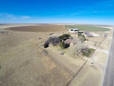 Bailey County, Lamb County Single Family Home Under Contract: 230 County Road 65