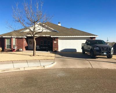 Single Family Home For Sale: 6701 93rd Street