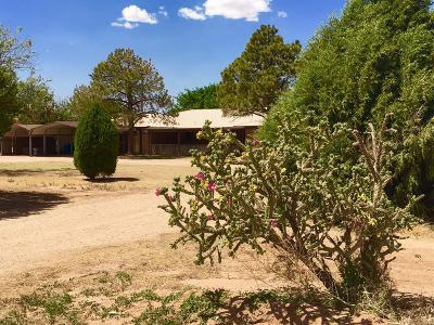 Bailey County, Lamb County Single Family Home For Sale: 1851 County Road 334